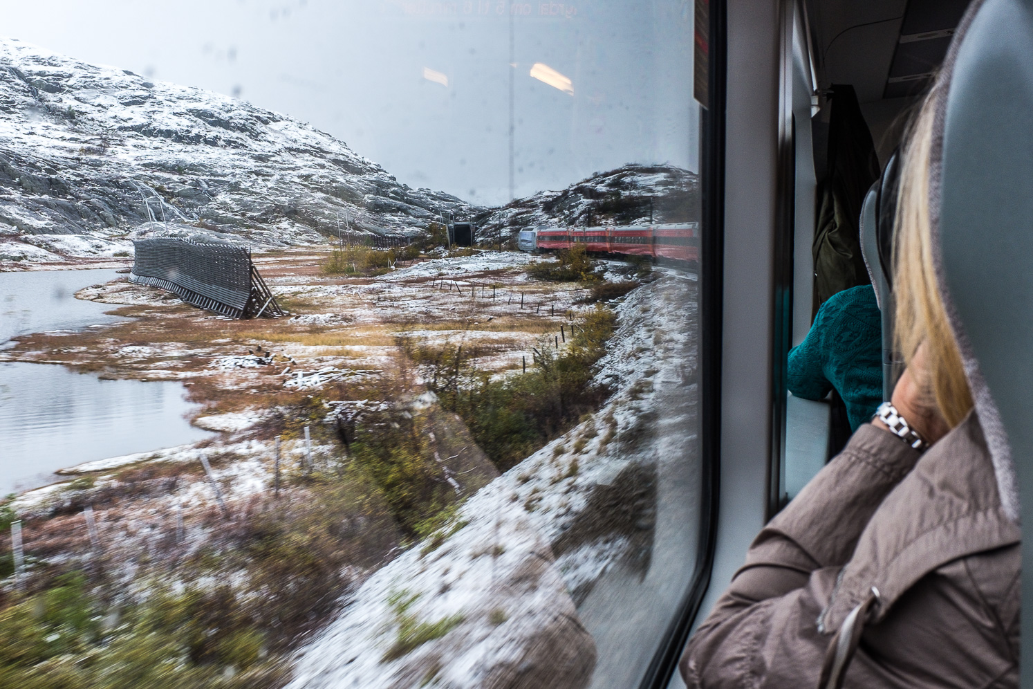 Between hallingskeid and Myrdal. Snow screens can be seen to the left side of the train.